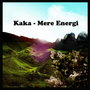 Mere Energi