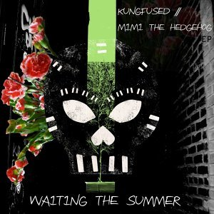 Waiting The Summer