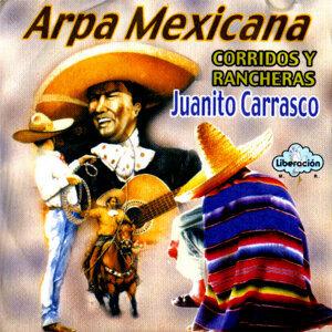 Arpa Mexicana - Corridos y Rancheras