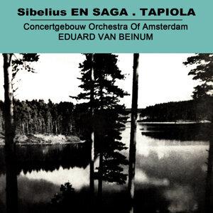 Sibelius En Saga - Tapiola