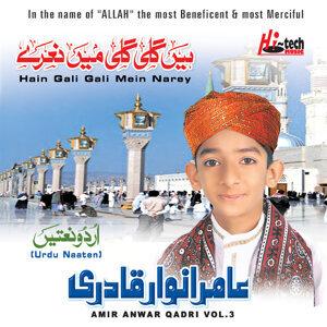 Hain Gali Gali Mein Narey Vol. 3 - Islamic Naats