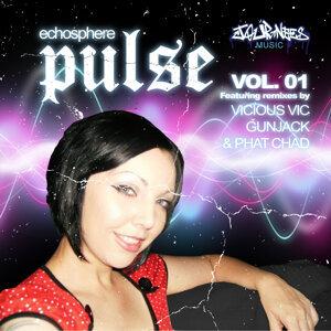 Pulse 2010 Vol. 1