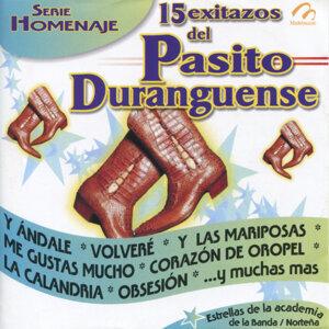 15 Exitazos del Pasito Duranguense