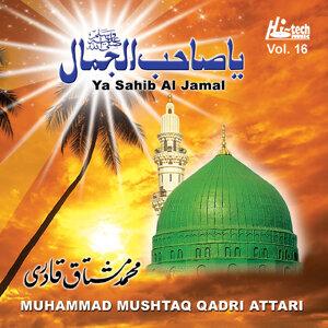 Ya Sahib Al Jamal Vol. 16 - Islamic Naats