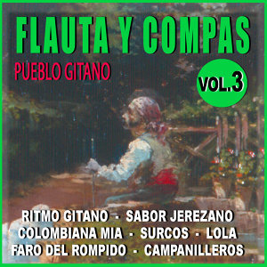 Flauta Y Compas Volumen 3