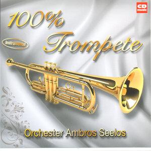 100% Trompete