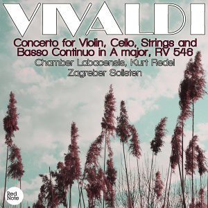 Vivaldi: Concerto for Violin, Cello, Strings and Basso Continuo in A major, RV 546