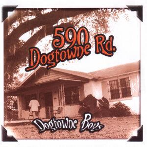 590 Dogtowne Rd