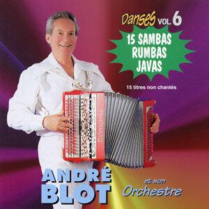 Danses Vol. 6 : 15 Sambas, Rumbas Et Javas A L'accordéon