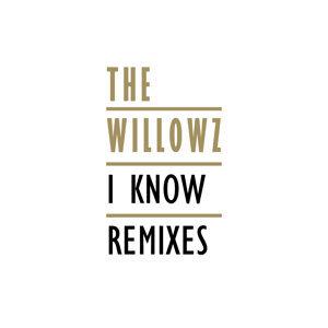 I Know Remixes