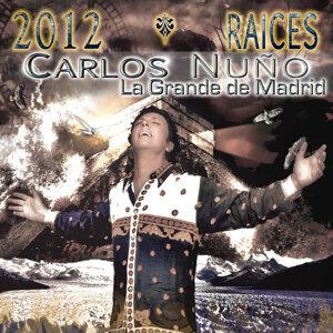 2012 Raices