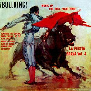 Bullring!