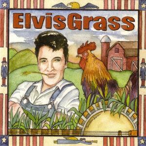 Elvis Grass