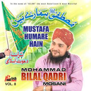 Mustafa Humare Hain Vol. 8 - Islamic Naats