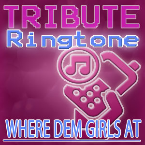 Where Them Girls At (David Guetta feat. Nicki Minaj & Flo Rida Tribute) - Ringtone