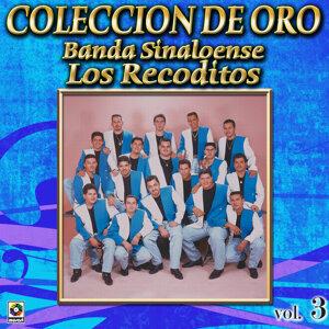 Banda Sinaloense Coleccion De Oro, Vol. 3 - Tu Abandono