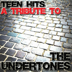 A Tribute To The Undertones