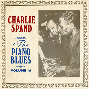 The Piano Blues Volume 16