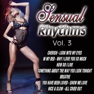 Sensual Rhythms Vol.3
