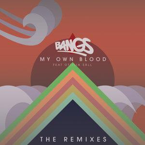 My Own Blood (feat. Ottilia Säll) - The Remixes