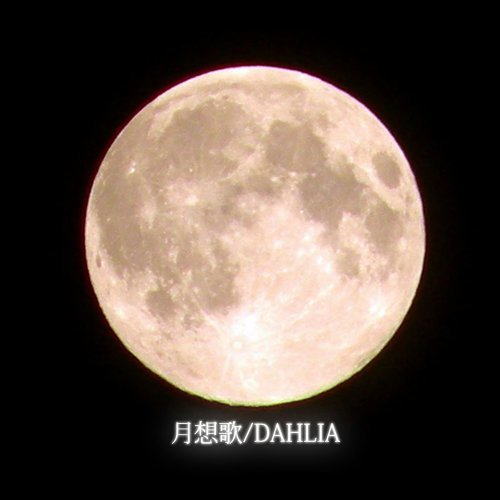 月想歌/DAHLIA