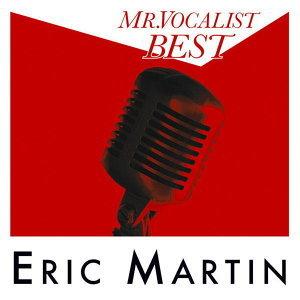 Mr. Vocalist Best (K歌之王最精選)