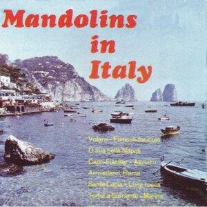 Mandolins in Italy