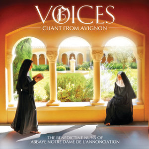 Voices: Chant From Avignon - Standard CD Album