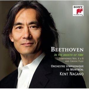 "Symphony No. 6 in F Major, Op. 68 ""Pastorale"""