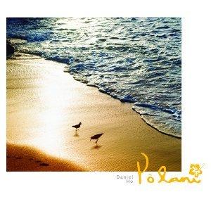 金色沙灘的自由漫步