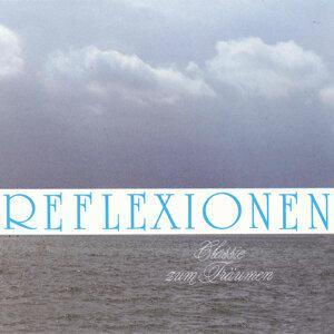 Reflexionen - Vol. 1