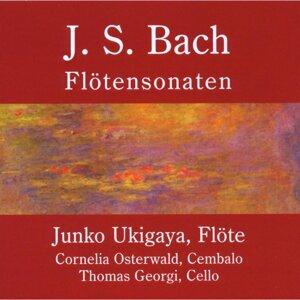 Johann Sebastian Bach: Flötensonaten, BWV 1030-1035