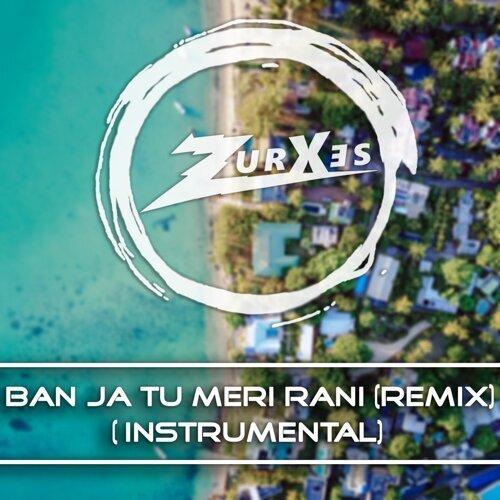 Tu Meri Rani (Instrumental)