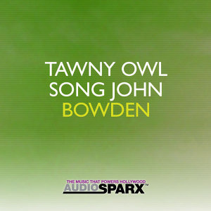 Tawny Owl Song
