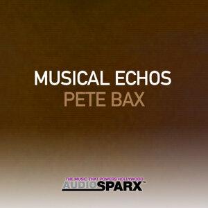Musical Echos