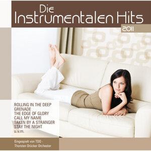Die Instrumentalen Hits 2011