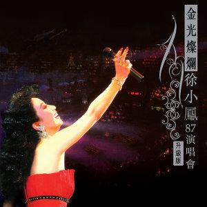 金光燦爛徐小鳳87演唱會(升級版)