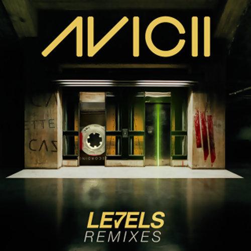 Levels - Skrillex Remix