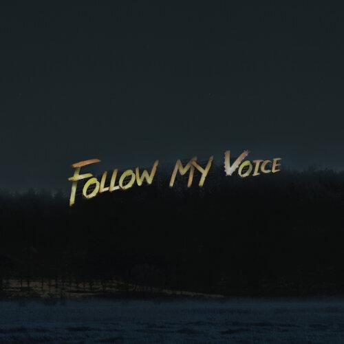 Follow My Voice