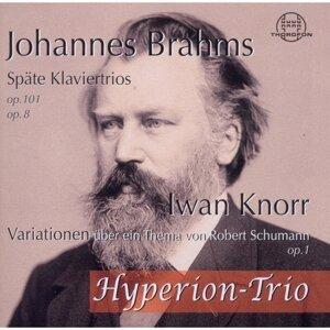 Johannes Brahms: Späte Klaviertrios, op. 101, op. 8 - Iwan Knorr: Variationen über ein Thema von Schubert, op.1