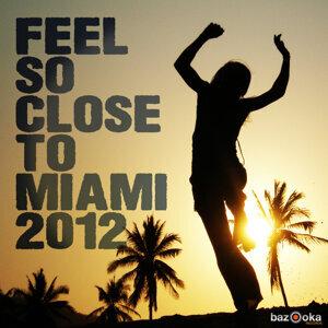 Feel So Close to Miami 2012