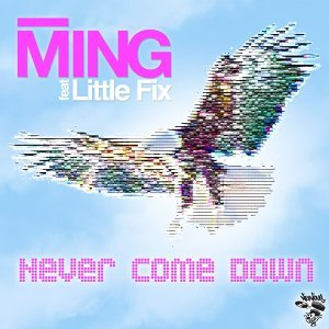 Never Come Down feat. Little Fix