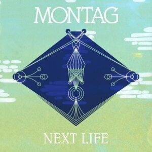 Next Life b/w Trip The Light Fantastic (Memory Tapes Remix)