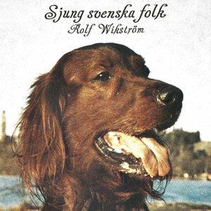 Sjung svenska folk
