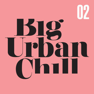 Big Urban Chill - Vol. 2