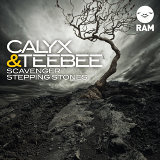Scavenger / Stepping Stones