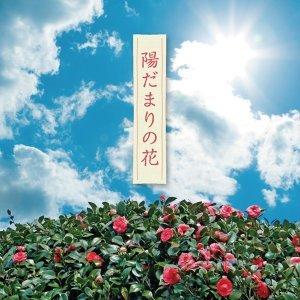 陽だまりの花