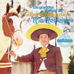 Los Grandes Exitos De Gilberto Valenzuela