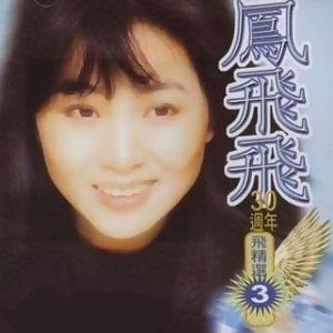 鳳飛飛30週年-飛精選3
