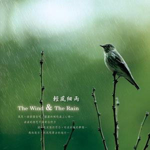 輕風細雨(The Wind & The Rain)